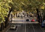 calle con trafico